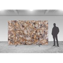 Brown Petrified Wood Precioustone - poliert